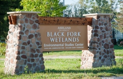 Ashland University's 'Naturalist on Duty' Series Continues with Focus on Pollinators and Prairies